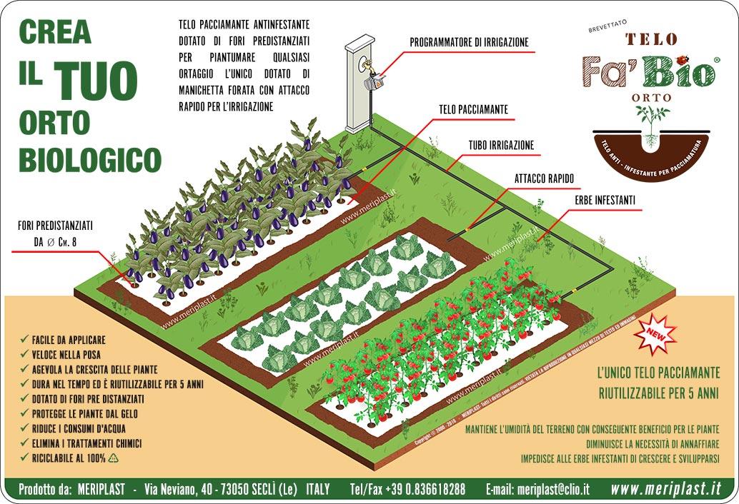 Telo Non Telo Per Piante: Consigli riparare le piante dal freddo verde.